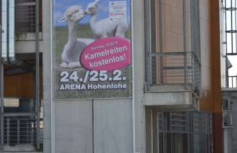 "Parodoje ""Alpaka Schau Süd 2018"""