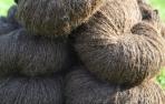 Alpakos Peruvian Armando vilnos siūlai